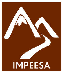 Camp Impeesa CIT Application